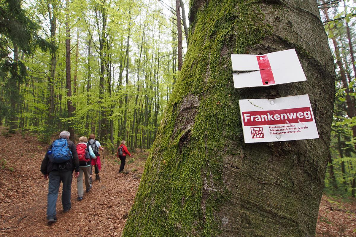 2015 DAV Suhl Höhlenwanderung Fränkische Schweiz Frankenweg (Foto: Andreas Kuhrt)