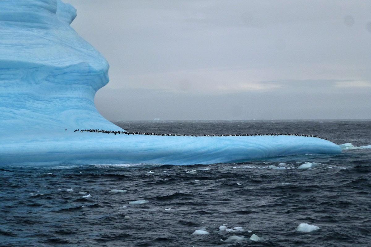 Eisberge in der Antarktis (Foto: Lehmann)