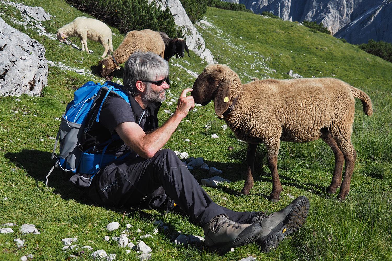 Andreas & Schafe an der Sunntiger-Alm . Karwendel (Foto: Manuela Hahnebach 2017)