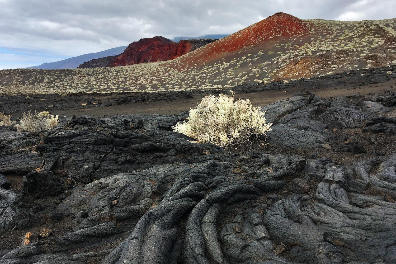 Lava-Land bei La Restinga . El Hierro 2018 (Foto: Manuela Hahnebach)