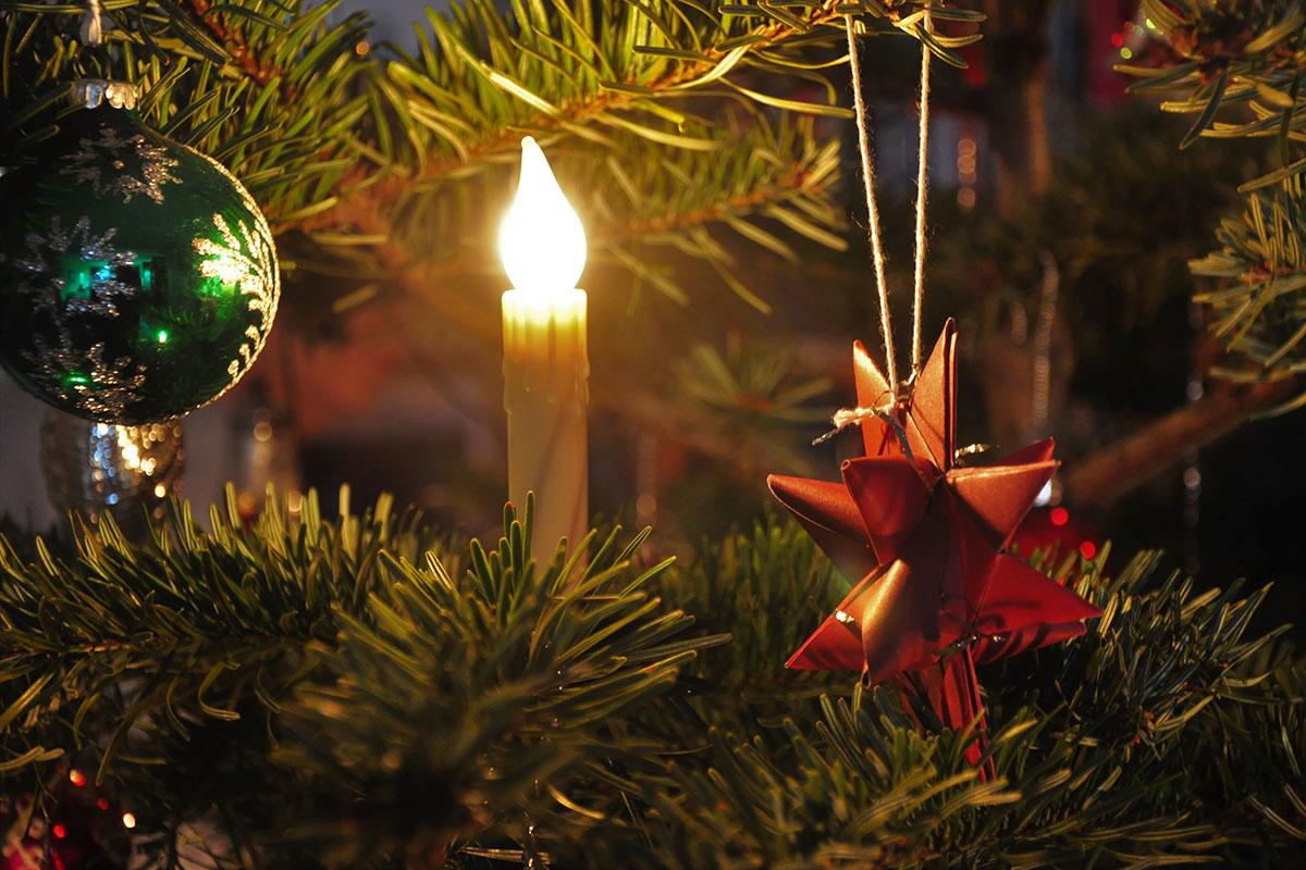 Weihnachtsbaum (Foto: Klaus Wahl)